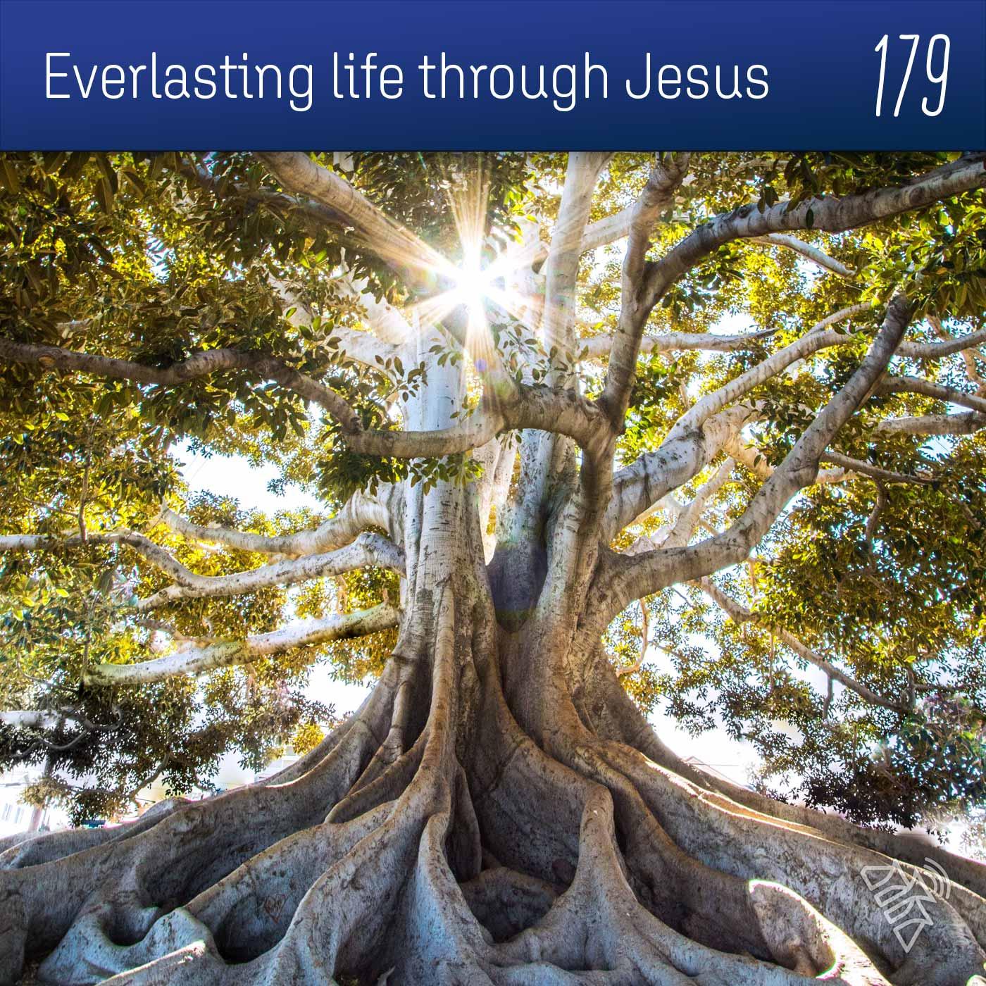 Everlasting life through Jesus